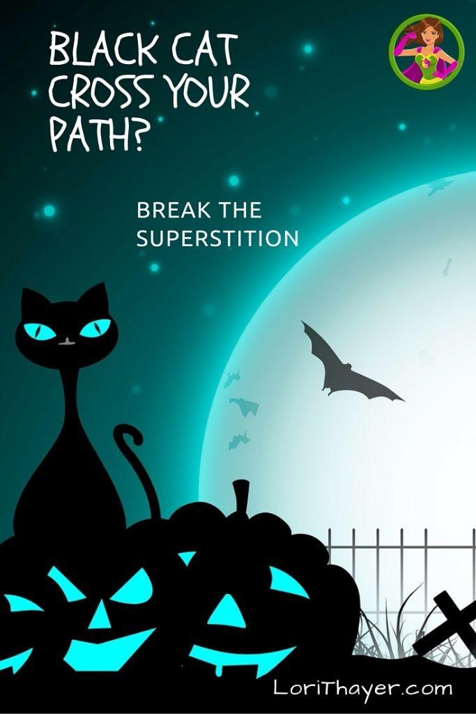 Black Cat Superstition PT