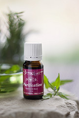 Purification Clean Naturally With Purification Essential Oil